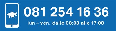Helpline dei Grigioni: 081 254 16 36
