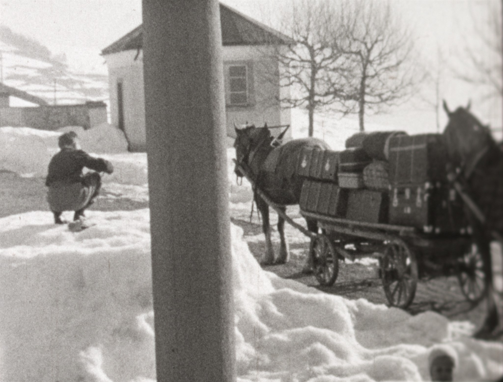 IV. Wintertertial 1950 (1950)